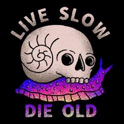 LIVE SLOW DIE OLD