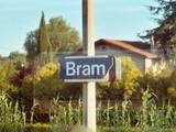 Bramish