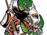 hockeygator