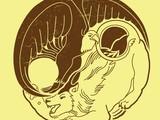 hipbopp