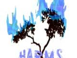 Harmsway