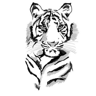 Tiger fading
