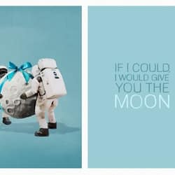 I would give you the moon!