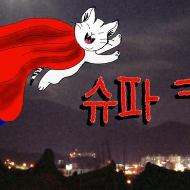 Korean Super Cat