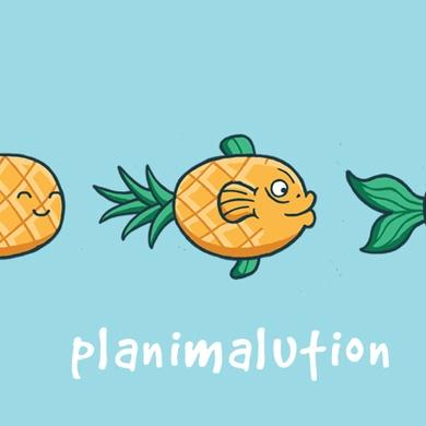Planimalution
