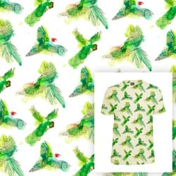 Summer Parrots