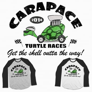 Turtle Races