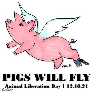 Pigs Will Fly 12-18-21 Animal Liberation Day