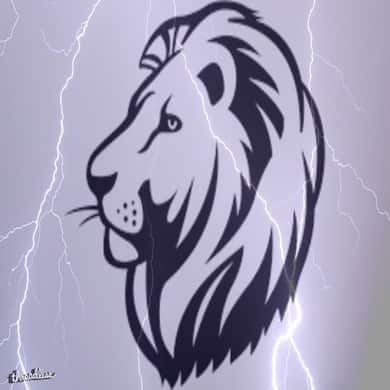Lions and Thunder