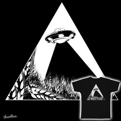 rye ufo