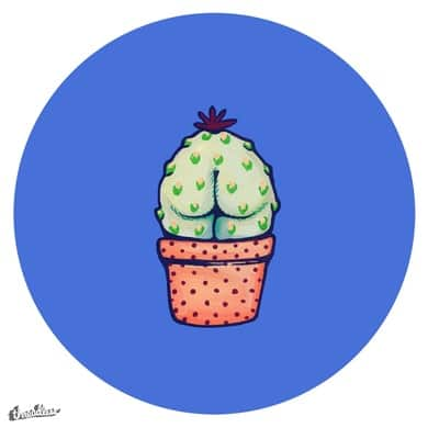 Suggestive Succulents : Day Three