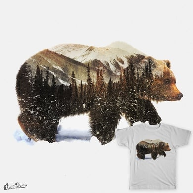 Bear In The Arctic