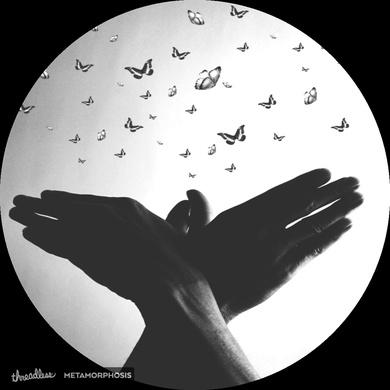 ASL Butterfly