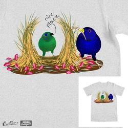 Avian courtship