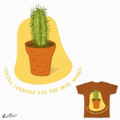 Cactus yourself for the real world