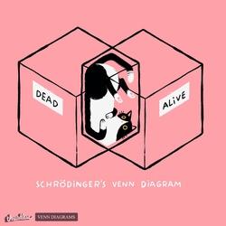 Schrödinger's Venn Diagram