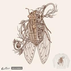 anatomy of cicada