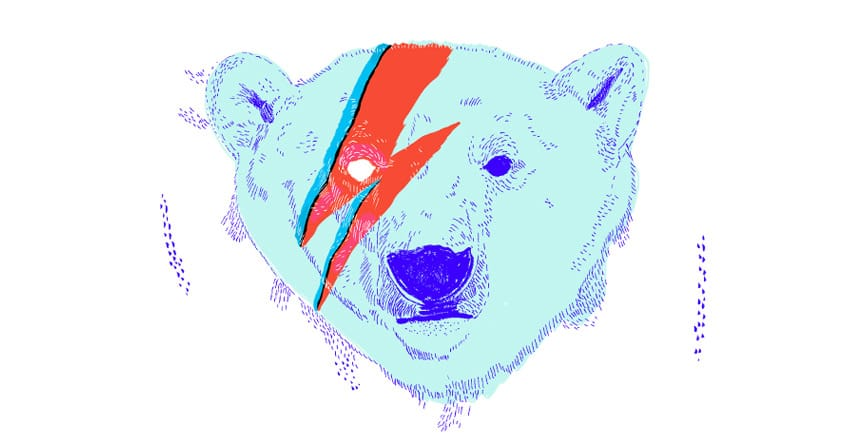 Bowie Bear by Luciarella on Threadless