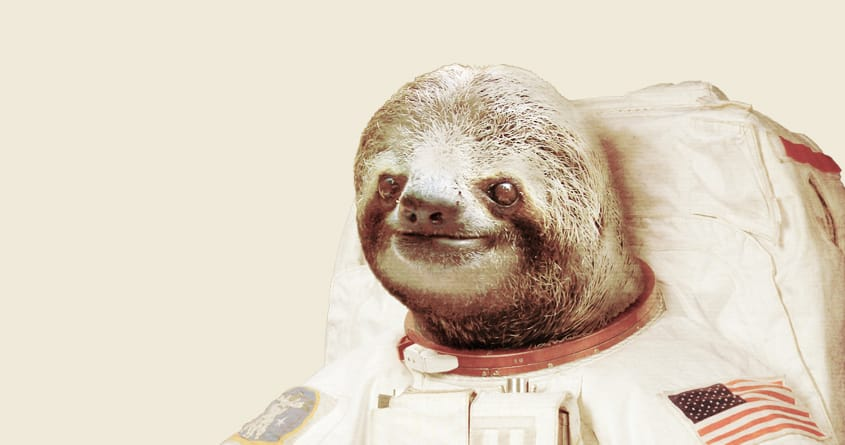 Astronaut Sloth by BakusPT on Threadless