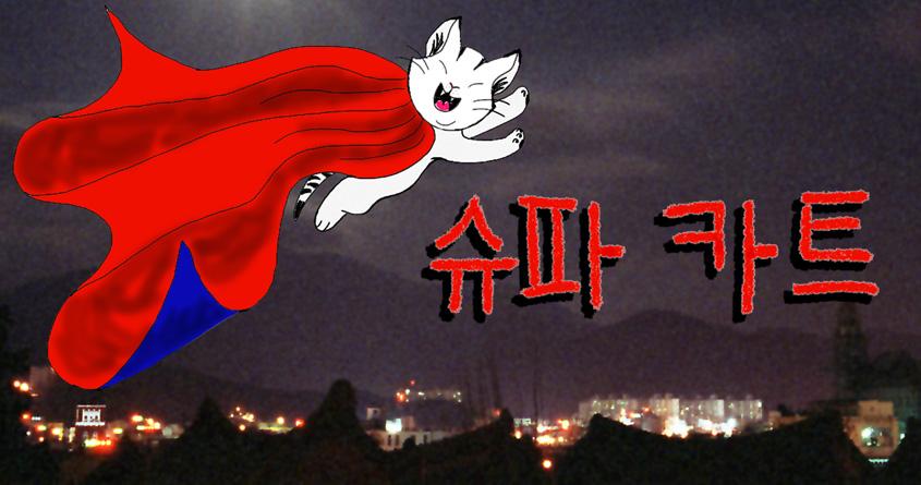 Korean Super Cat by AuntieVAVA on Threadless