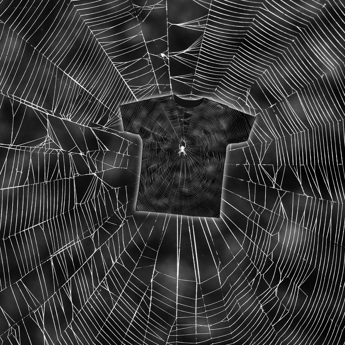 Spider, man! by cshimala on Threadless