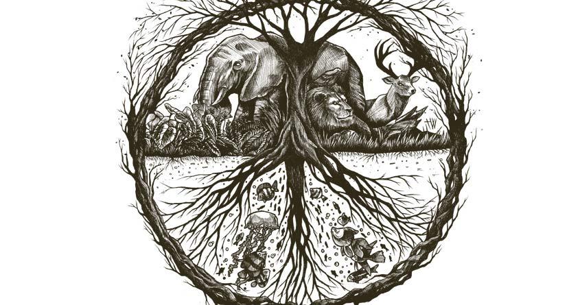Wild & Peace by WijanaTata on Threadless