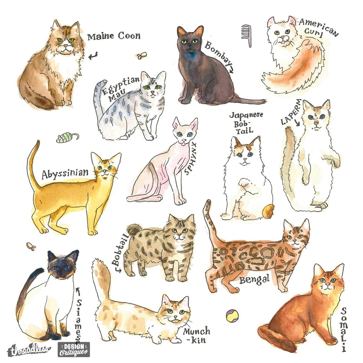 Score Cat Breeds by jiajiaen 923 on Threadless